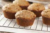 Fresh Homemade Bran Muffins — Stock Photo