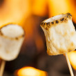 ������, ������: Delicious White Fluffy Roasted Marshmallows