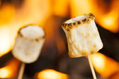 Delicious White Fluffy Roasted Marshmallows — 图库照片