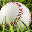 New White Baseball in green grass — Stock Photo