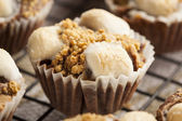 Hot Homemade Smore Cupcakes — Stock Photo