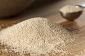 Organic Raw Yeast for baking bread — Stock Photo