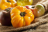 Fresh Organic Ripe Heirloom Tomatoes — Stock Photo