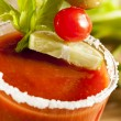 Spicy Bloody Mary Alcoholic Drink — Stock Photo #23506853