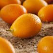 Fresh Organic Raw Kumquats — Stock Photo