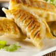 Homemade Asian Vegeterian Potstickers - Stock Photo