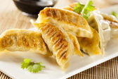 Homemade Asian Vegeterian Potstickers — Stock Photo