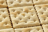 Organic Whole Wheat Soda Crackers — Stock Photo