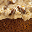 Homemade Gourmet German Chocolate Cake — Stock Photo