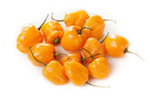 Organic Hot and Spicy Habanero Peppers — Stock Photo