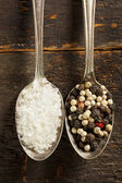Raw Organic Sea Salt and Pepper — Stock Photo