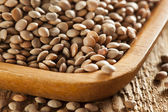 Dry Organic Brown Lentils — Stock Photo
