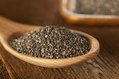 Organic Dry Chia Seeds — Stock Photo