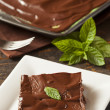 Stock Photo: Homemade Chocolate and Mint Brownie