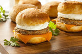 Homemade Egg Sandwich with Sausage and Cheese — Stock Photo
