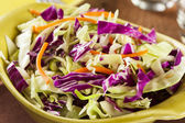 Homemade Coleslaw with Shredded Cabbage and Lettuce — Stock Photo