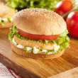 Breaded Chicken Patty Sandwich on a Bun — Stock Photo
