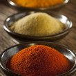 Organic Gourmet Hot Ground Spices — Stock Photo