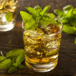 Homemade Gourmet Mint Julep — Stock Photo #28874951