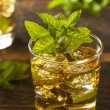 Homemade Gourmet Mint Julep — Stock Photo