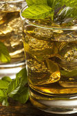 Homemade Gourmet Mint Julep — Stockfoto