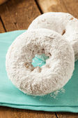 White Homemade Powdered Donuts — Stock Photo