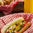 Chicago Style Hot Dog — Stock Photo