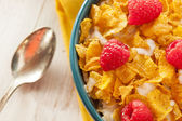 Healthy Cornflake Cereal — Stock Photo