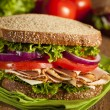 Homemade Turkey Sandwich — Stock Photo #31744423