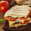Homemade Tomato and Mozzarella Panini — Stock Photo