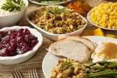 Homemade Turkey Thanksgiving Dinner — Stock Photo
