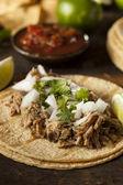 Traditional Pork Tacos — Stok fotoğraf
