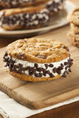 Chocolate Chip Cookie Ice Cream Sandiwch — Stock Photo