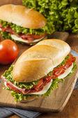 Homemade Italian Sub Sandwich — Stock Photo