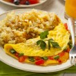 Homemade Organic Vegetarian Cheese Omelette — Stock Photo