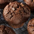 Double Chocolate Chip Muffin — Stock Photo