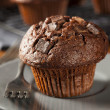 Double Chocolate Chip Muffin — Stock Photo #36142441