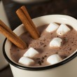 Gourmet Hot Chocolate Milk — Stock Photo
