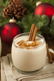 Homemade Festive Cinnamon Eggnog — Stock Photo