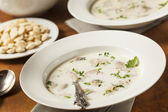 Homemade Organic Oyster Stew Appetizer — Stock Photo