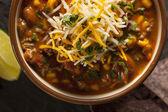 Soutwestern Santa Fe Soup — Stock Photo