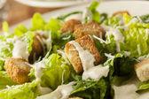 Healthy Green Organic Caesar Salad — Stock Photo