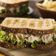 Healthy Tuna Sandwich with Lettuce — Stock Photo