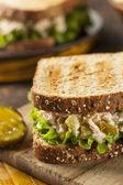 Healthy Tuna Sandwich with Lettuce — Stock Photo