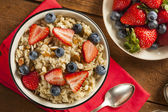 Healthy Homemade Oatmeal with Berries — 图库照片