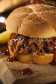 Barbeque Pulled Pork Sandwich — Stock Photo