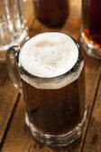 Cold Refreshing Root Beer — Stock Photo