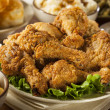 Homemade Southern Fried Chicken — Stock Photo #41631327