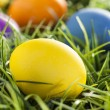 Stock Photo: Colorful Dyed Eggs for Easter