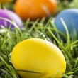 Foto de Stock  : Colorful Dyed Eggs for Easter